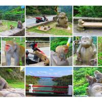 台東縣休閒旅遊 景點 景點其他 登仙橋遊憩區 照片