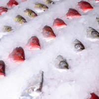 高雄市美食 餐廳 中式料理 熱炒、快炒 文進活海產 照片