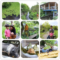 宜蘭縣休閒旅遊 景點 觀光農場 花泉休閒農場 照片