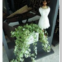 台北市美食 餐廳 咖啡、茶 咖啡館 Elly's Flower & caf'e台北花苑時尚整合館 照片
