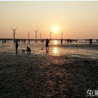 台中市休閒旅遊 景點 海邊港口 高美濕地 照片