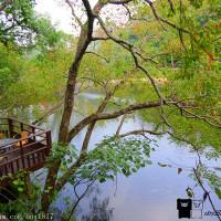 苗栗縣休閒旅遊 住宿 民宿 湖畔花時間(苗栗縣民宿053號) 照片