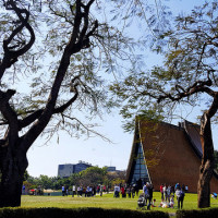 台中市休閒旅遊 運動休閒 體育場 東海大學 照片