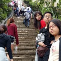 台北市休閒旅遊 景點 景點其他 象山自然步道 照片