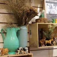 葉呀咪的冒險樂園在ZOO Café動物園野餐咖啡 pic_id=2915244