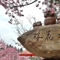 南投縣休閒旅遊 景點 遊樂場 九族文化村 照片