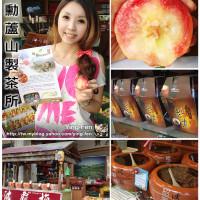 南投縣休閒旅遊 景點 觀光商圈市集 明勳蘆山製茶所 照片