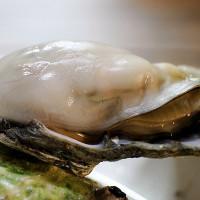 台中市美食 餐廳 餐廳燒烤 燒烤其他 第一猛鮮蚵 照片