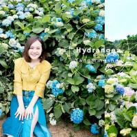 台北市休閒旅遊 景點 觀光花園 高家花田 照片