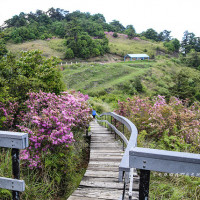 南投縣休閒旅遊 景點 公園 鳶峰 照片
