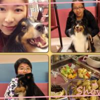 台北市美食 餐廳 異國料理 多國料理 派特芙德寵物餐廳(臨江店) 照片