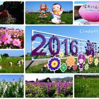 台中市休閒旅遊 景點 觀光花園 新社花海 照片
