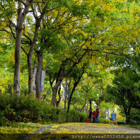 台中市休閒旅遊 景點 美術館 亞洲現代美術館 照片