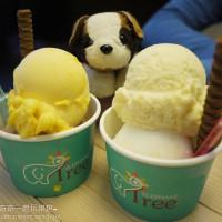 台南市美食 餐廳 飲料、甜品 冰淇淋、優格店 小象樹義式冰淇淋 照片