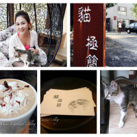 宜蘭縣美食 餐廳 咖啡、茶 咖啡館 貓極簡 照片