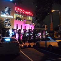 台南市美食 餐廳 火鍋 青森Dryad時尚餐館 照片
