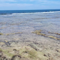 屏東縣休閒旅遊 景點 海邊港口 龍蝦洞 照片