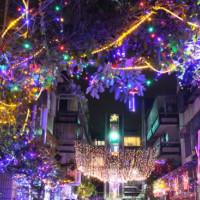 台北市休閒旅遊 景點 公園 石牌聖誕巷 照片