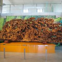 宜蘭縣休閒旅遊 景點 觀光工廠 菌寶貝博物館 照片