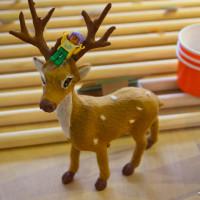 台北市休閒旅遊 購物娛樂 設計師品牌 鹿皮LOOPY 照片