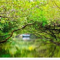 台南市休閒旅遊 景點 森林遊樂區 台江國家公園 照片