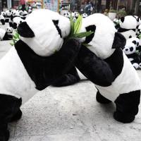 台中市休閒旅遊 景點 景點其他 台中熊貓裝置藝術展 照片