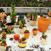 宜蘭縣休閒旅遊 景點 觀光花園 金車蘭花園 照片