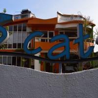 宜蘭縣美食 餐廳 咖啡、茶 咖啡館 3Cats三隻貓宜蘭美食景觀餐廳 照片