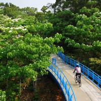 苗栗縣休閒旅遊 景點 景點其他 銅鑼挑鹽古道(自行車道) 照片