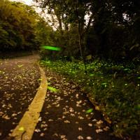 新竹縣休閒旅遊 景點 景點其他 關西十寮 照片