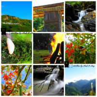 新竹縣休閒旅遊 景點 森林遊樂區 司馬庫斯 照片
