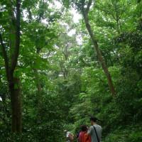 新竹縣休閒旅遊 景點 景點其他 三元宮 照片