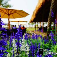 雲林縣休閒旅遊 景點 觀光工廠 雅聞峇里海岸觀光工廠 照片