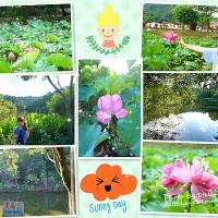 新北市休閒旅遊 景點 觀光花園 大埤荷花池 照片