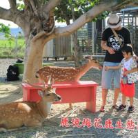 屏東縣休閒旅遊 住宿 民宿 鹿境梅花鹿生態園區 照片