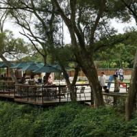 桃園市休閒旅遊 景點 觀光花園 楊梅-森林鳥花園 照片