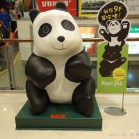 台北市休閒旅遊 景點 展覽館 紙貓熊展。黑白雙熊公益認養特展 照片