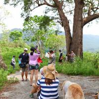 台東縣休閒旅遊 景點 景點其他 尚德村 照片