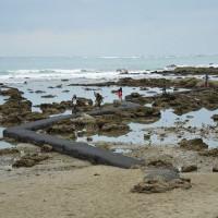 台東縣休閒旅遊 景點 海邊港口 杉原海洋生態公園富山護魚區 照片