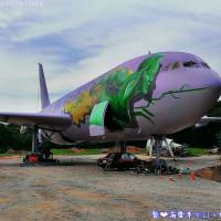 桃園市休閒旅遊 景點 景點其他 桃園觀音飛機 照片