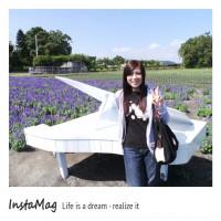 台中市休閒旅遊 景點 觀光花園 2013中社花市賞花去~ 照片