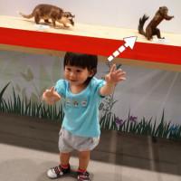 台北市休閒旅遊 購物娛樂 購物娛樂其他 [展覽]六福村野生動物大遷徙 照片