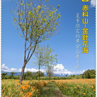 花蓮縣休閒旅遊 景點 觀光花園 汪家古厝 照片