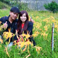 台北市休閒旅遊 景點 觀光農場 慈音休閒農莊 照片