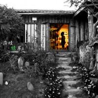 花蓮縣美食 餐廳 中式料理 原民料理、風味餐 莎娃綠岸 照片