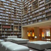台北市休閒旅遊 住宿 商務旅館 大地酒店 The Gaia Hotel 照片