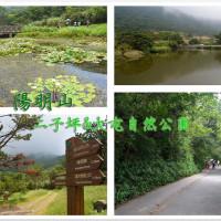 台北市休閒旅遊 景點 景點其他 二子坪步道 照片