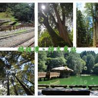 嘉義縣休閒旅遊 景點 森林遊樂區 阿里山沼平車站姊妹潭 照片