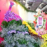 台北市休閒旅遊 運動休閒 運動休閒其他 花博公園爭豔館 照片