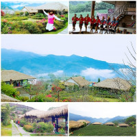 嘉義縣休閒旅遊 景點 觀光茶園 鄒族文化部落優遊吧斯文化園區 照片